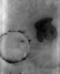 Sageată pe Marte. Foto: NASA/JPL/ASU