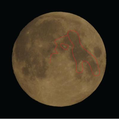 Doamna de pe Lună