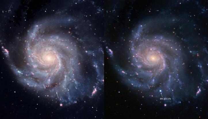 Supernova SN 2011FE în galaxia Messier 101.  Foto: BJ Fulton (LCOGT), PTF & the Space Telescope Science Institute