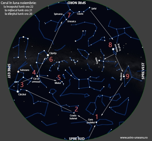 Nume de stele vizibile seara în luna noiembrie - ordinea în care se observa stelele din articol
