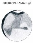 20030719-02h46m