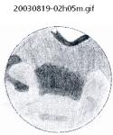 20030819-02h05m