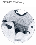 20030823-03h42mm
