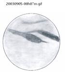 20030905-00h07m