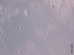 l_24-25iun04_plinius_ross