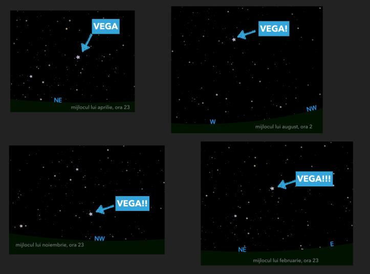 Vega. Vega! Vega!! Vega!!!