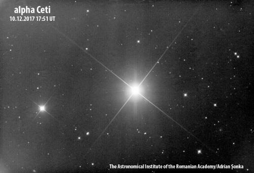 Alpha Ceti. Imagine: Institutul Astronomic al Academiei Române/Adrian Șonka
