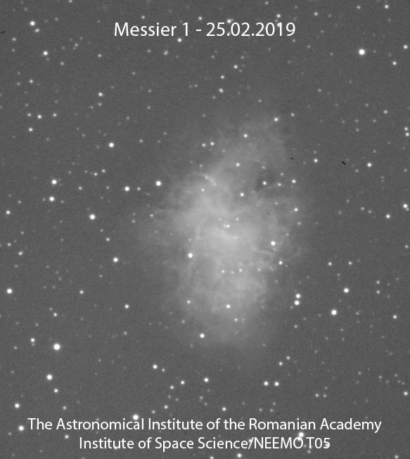 M01-01-NEEMO T05