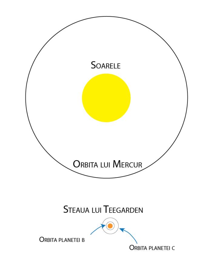 Sistemul solar și planetele stelei lui Teegarden. Mărimea stelelor și a orbitelor este la scară
