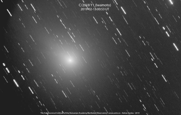 C2018Y1-20190213